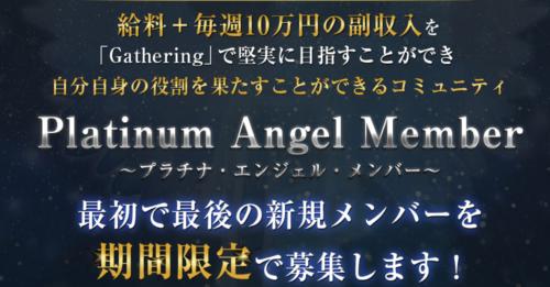 Platinum Angel Member